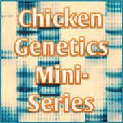 Scratch Cradle: Genetics Mini-Series