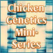 Scratch Cradle: Genetics Mini-Series